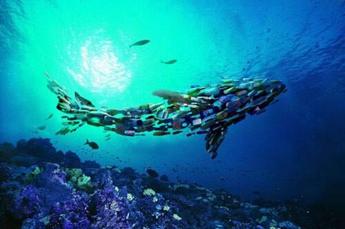 区块链技术可以帮助清洁海洋并改善废物管理流程吗?
