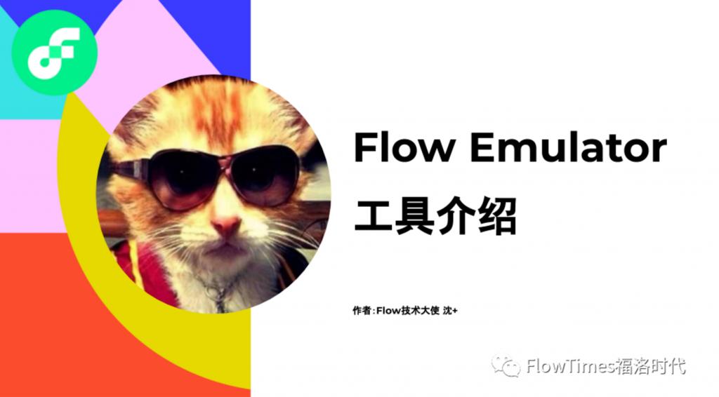 Flow Emulator 工具介绍